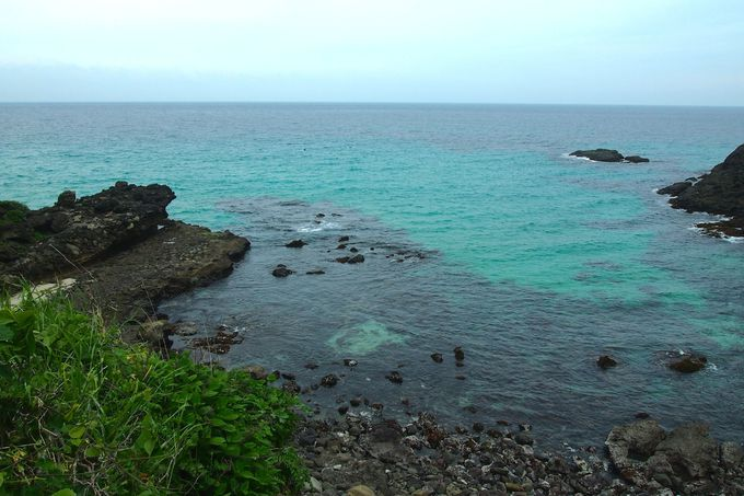 エメラルドグリーンの海岸が美しすぎる「白浜大浜海水浴場」