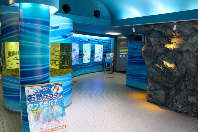 5.さいたま水族館