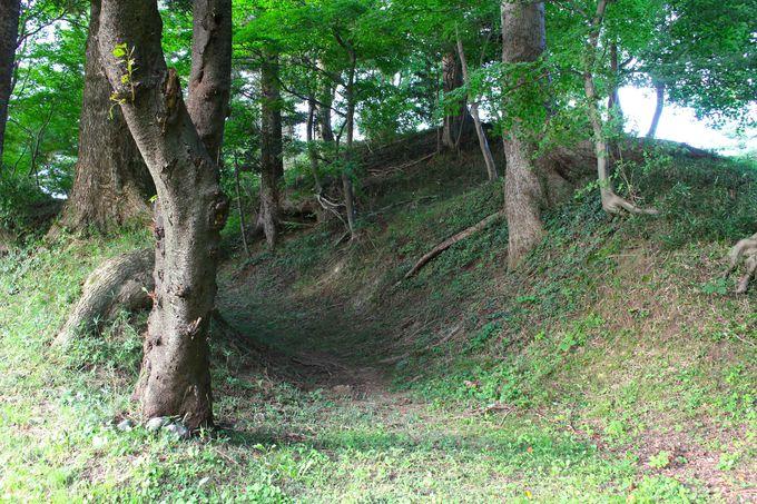 中世の息吹が残る土塁と空堀
