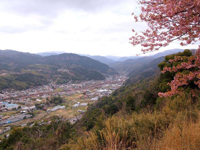 穴場スポットは、町を俯瞰できる「城山」