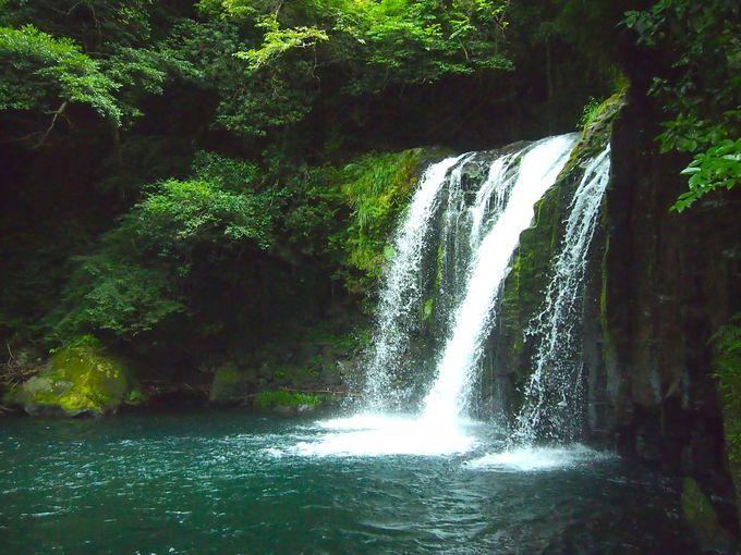 滝の音に癒される!「河津七滝(ななだる)」