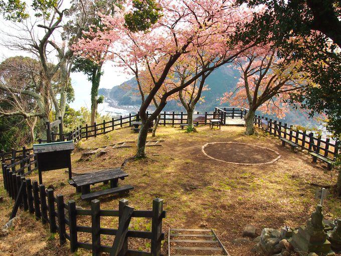城山ハイキングコースを探検「河津城跡」