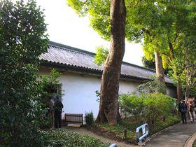 ついに一般公開がはじまった!皇居東御苑の「富士見多聞」を観光しよう