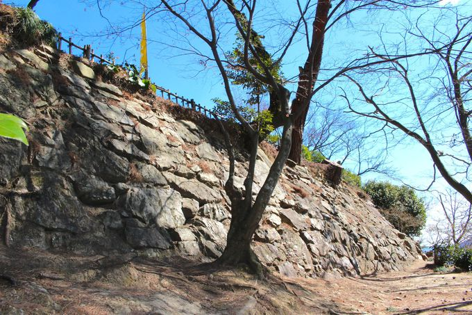関東では珍しい高石垣が見られる城だった!