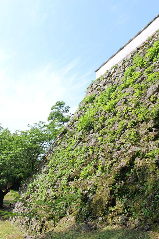 宇和島城はどんな城?
