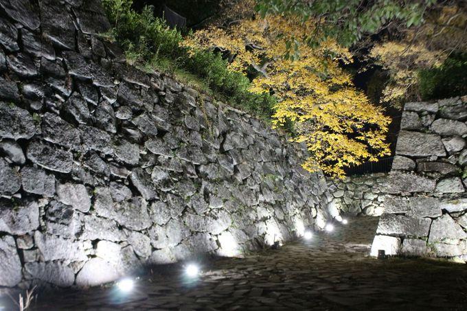 石垣を石垣のまま表現する光