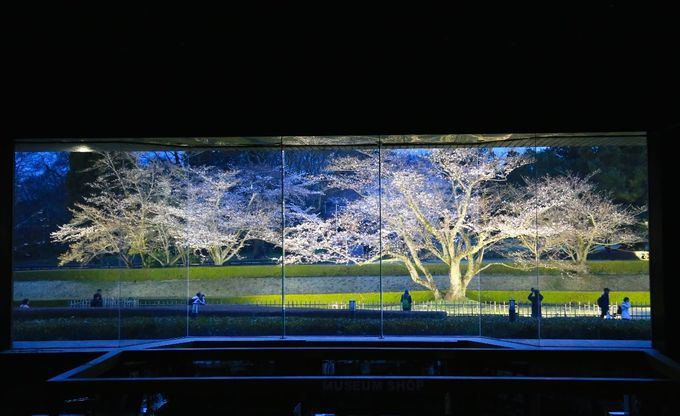 佐倉を観光するなら「オランダ風車」「国立歴史博物館」「ひよどり坂」