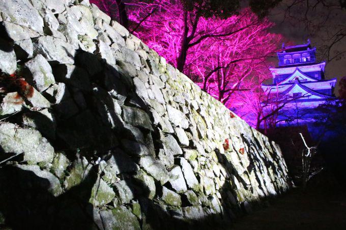 広島にチームラボがやってきた!2019年4月7日まで期間限定の「チームラボ 広島城 光の祭」