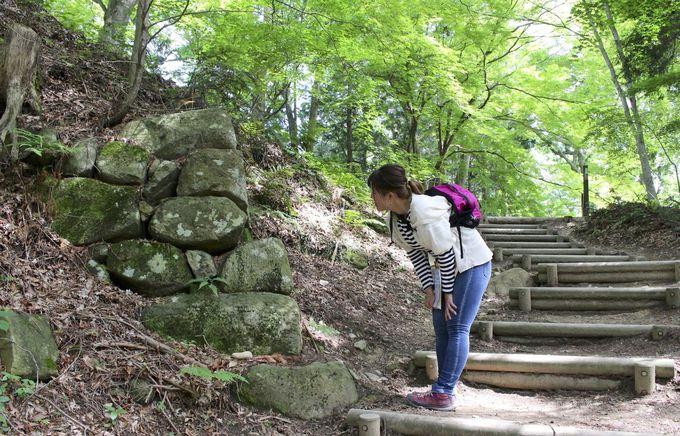 飛騨地域の歴史スポット「江馬氏館」、「高山城」と古い町並