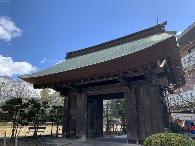 ダイナミックな土造りが特徴の「水戸城」