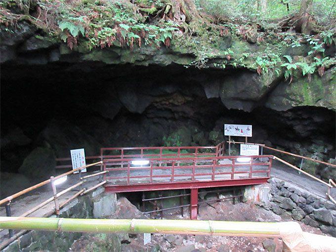 入口にしてこの荒々しさ!いざ、野趣あふれる溶岩洞穴へ!