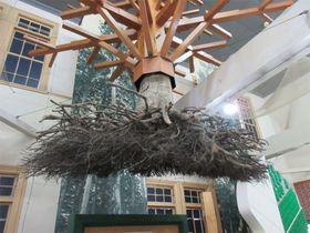 まるでラピュタのワンシーン!青森市森林博物館が面白い!