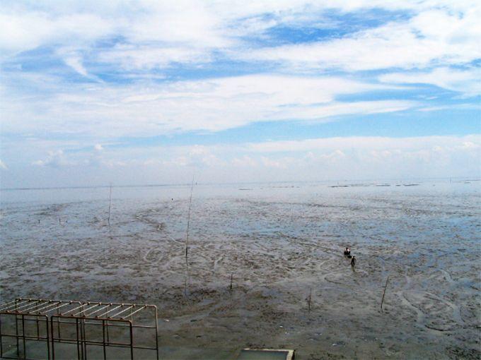 地平線?水平線?果てしなく広がる干潟は、有明海全体で188平方キロメートル!!