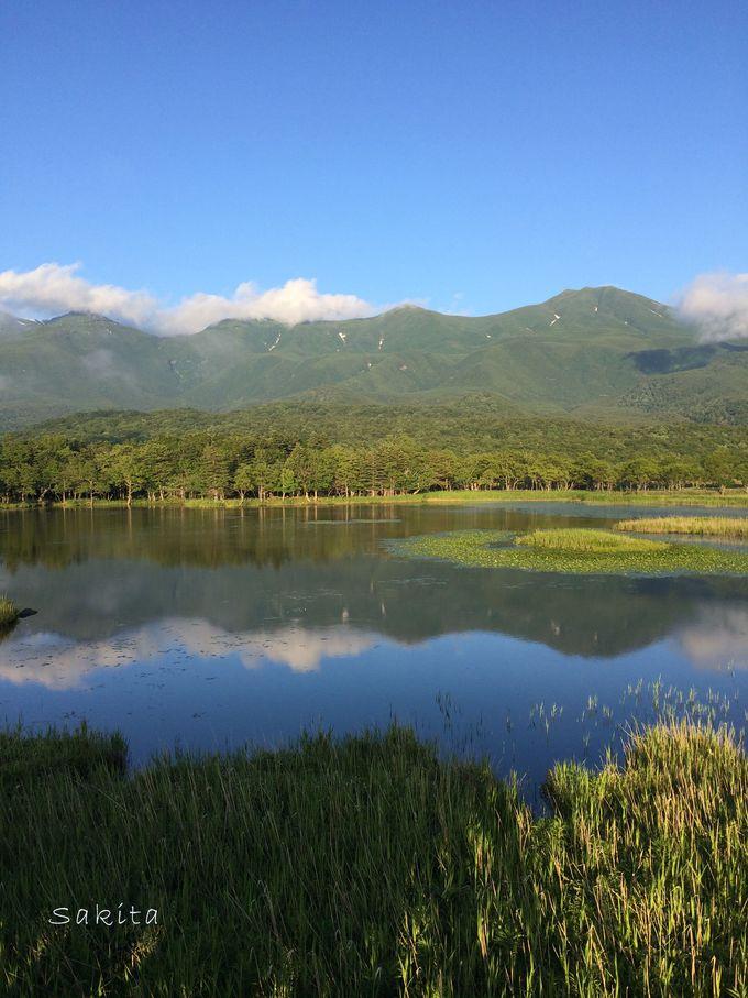 木道を歩くだけなら楽々&知床連山も見られる「知床五湖」