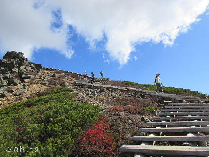 まさに空へ昇る階段!展望所への階段も見どころのひとつ