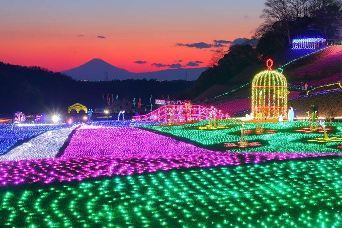 袖ヶ浦市・ドイツ村イルミは300万球!富士見も可能!