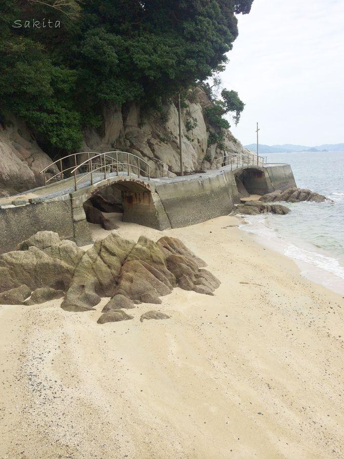 激しく浸食された海岸洞穴の迫力 かつてはカワウソも生息?