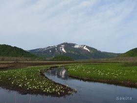 尾瀬のおすすめ観光スポット8選 美しい自然を堪能できるポイントはここ!