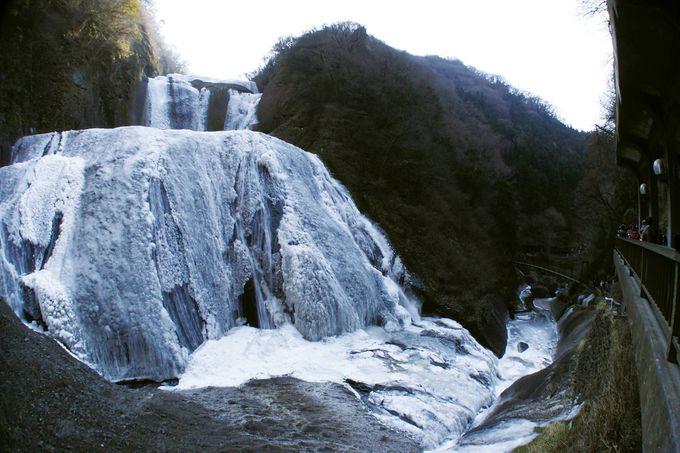 氷瀑の見頃はいつ?茨城「袋田の滝」で日本三名瀑の雄姿を見よ