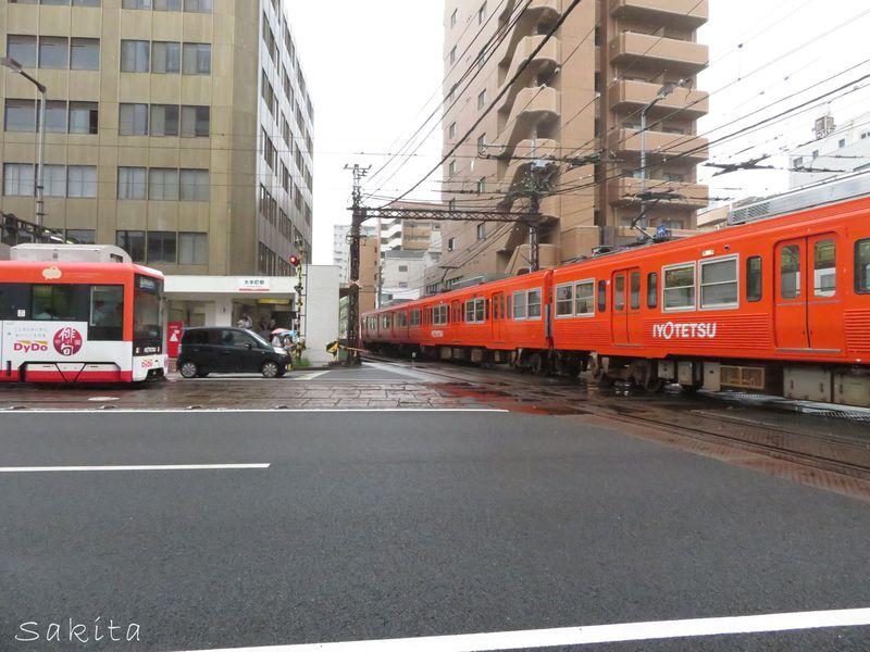 電車が電車を踏切まち!伊予鉄道のダイヤモンドクロスとは?