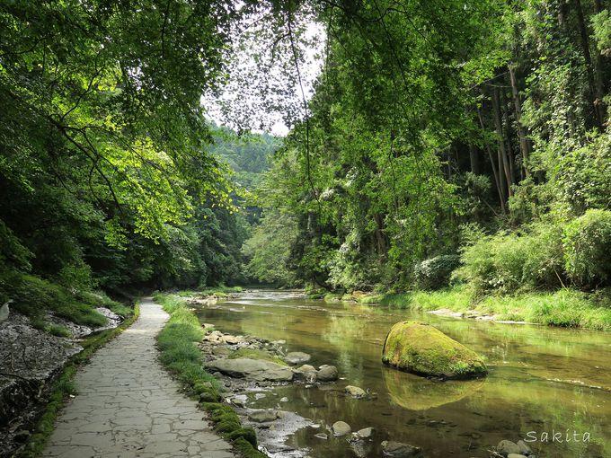 有名な粟又の滝を含む「滝めぐりコース」