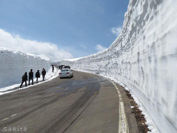 八幡平の雪の回廊は最大で8m!