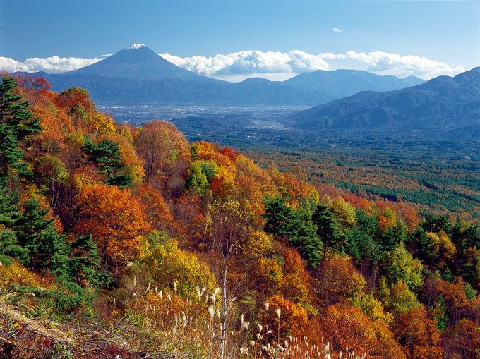 展望台からカラマツ紅葉と日本三大高峰を