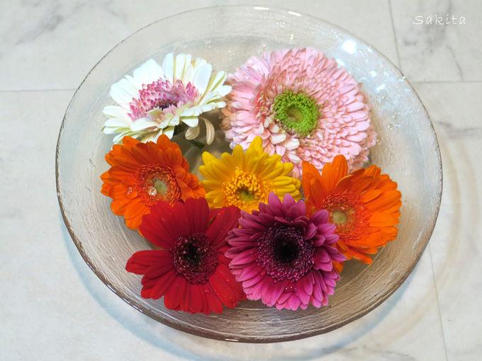 手水鉢は食器で代用できる!