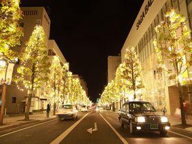 佐賀駅から続く光の道!サガ・ライトファンタジー2020