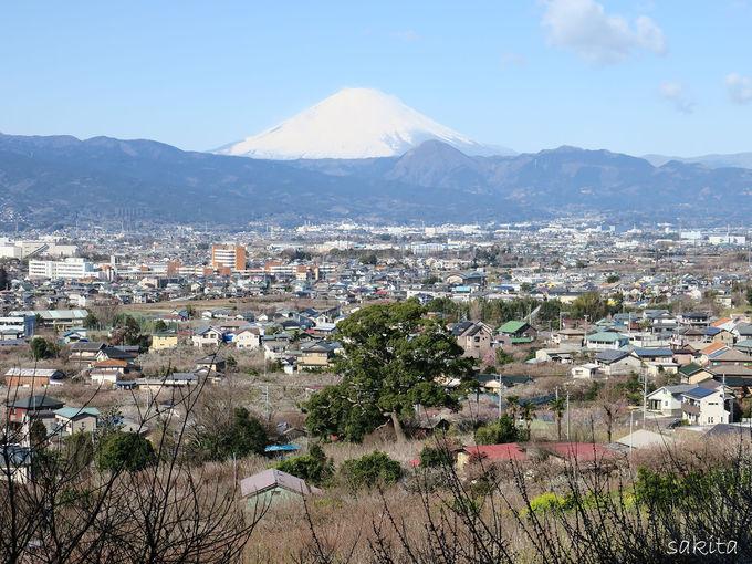小田原市は「関東の富士見百景」の地