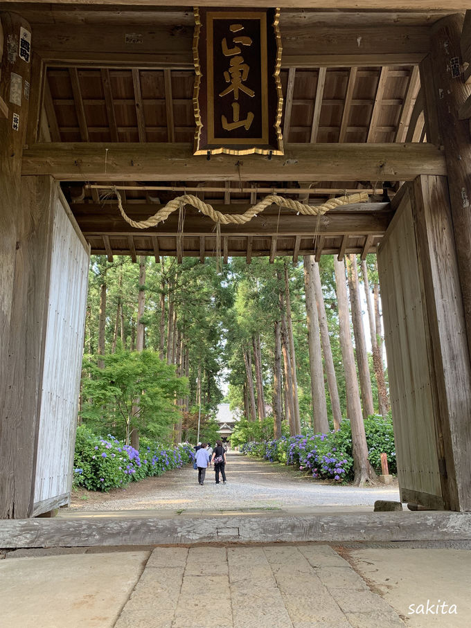 あじさい寺「正東山日本寺」の遊歩道