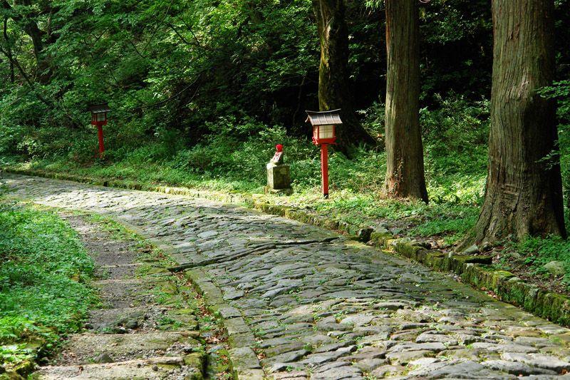 大神山神社の参道は、歩くだけで気持ちいい!