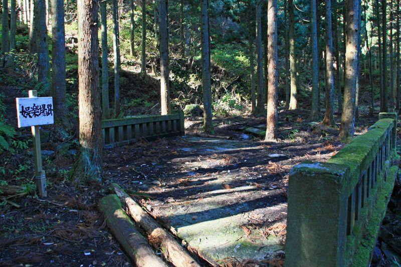 「東洋のマチュピチュ」で森になった町