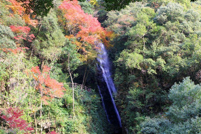 るり姫の伝説に導かれて登る白滝