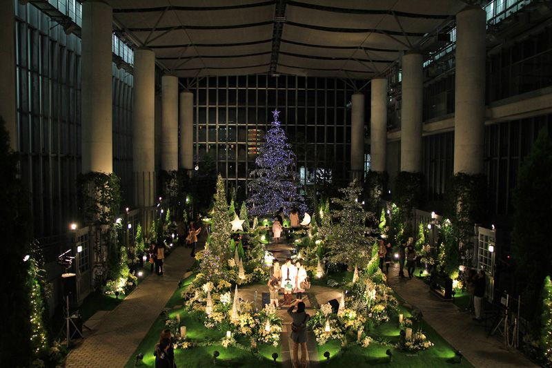 光と緑に包まれたクリスマスイリュージョンは別世界!