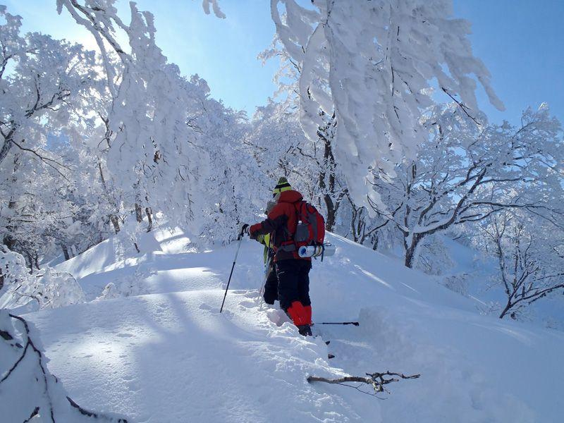 大山でスノーシューを楽しむなら「森の国」にお任せ!