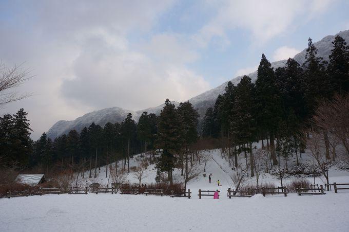 瀬戸内海から1時間で真っ白な雪景色に到着!