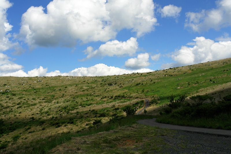 源氏ヶ駄馬で楽しむカルスト台地のお手軽ハイキング