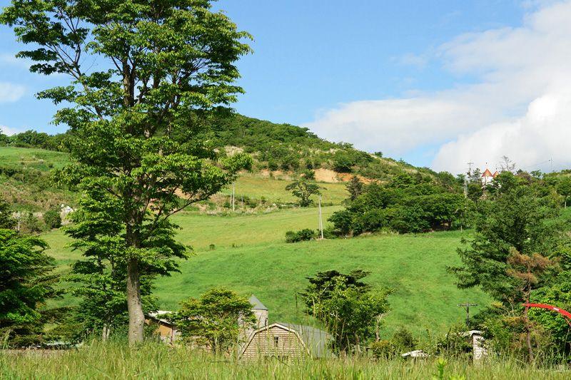 山上の北海道!酪農天国「大野ヶ原」