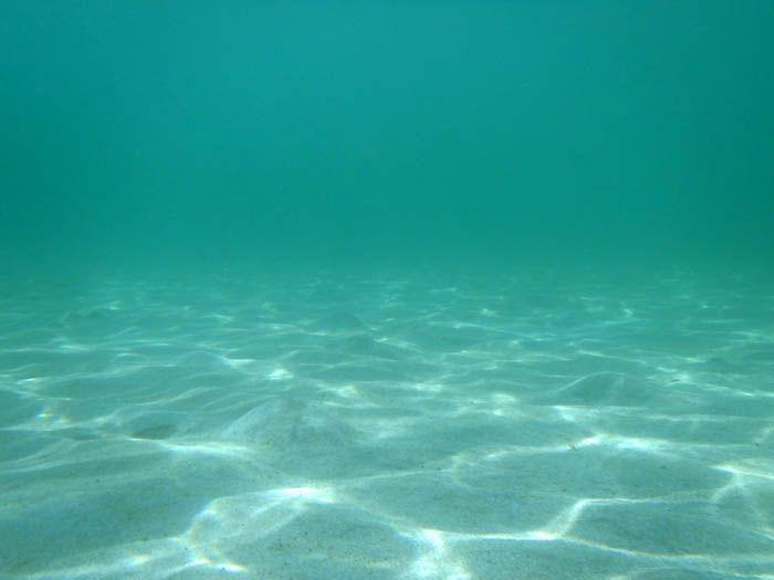 透明な竹野浜でぜひ楽しみたいシュノーケリング