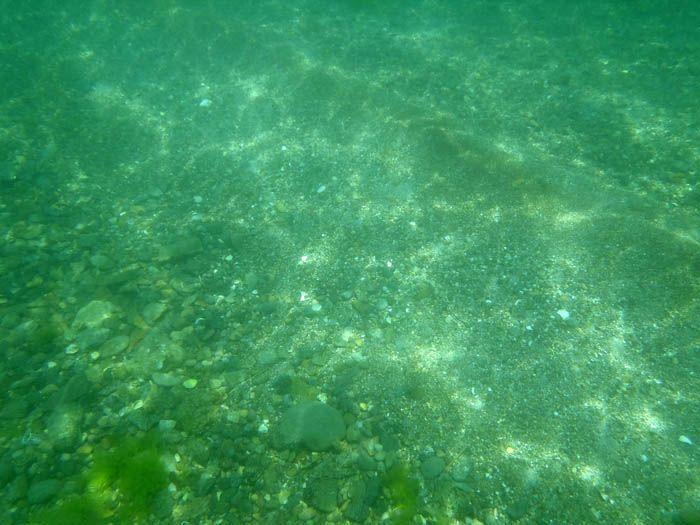 もっとアクティヴに竹野浜を楽しむなら西端のビーチで!