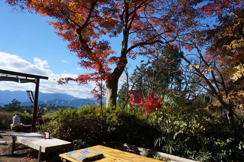 もみじ台「細田屋」は日本の美を集結した紅葉の茶屋
