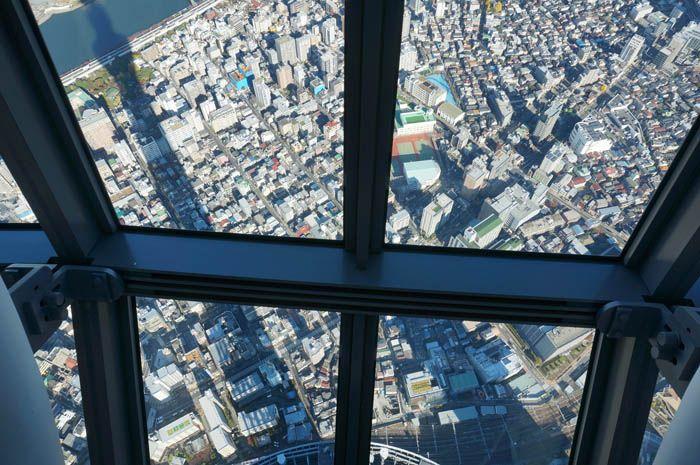 高さ450mの展望を独り占め?朝の天望回廊は一味違う!