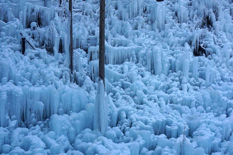 心行くまで静かにゆっくり鑑賞したい氷の芸術