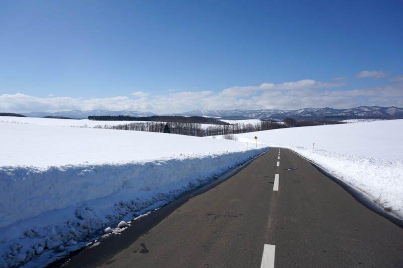 美瑛の白い丘を楽しくドライブ!