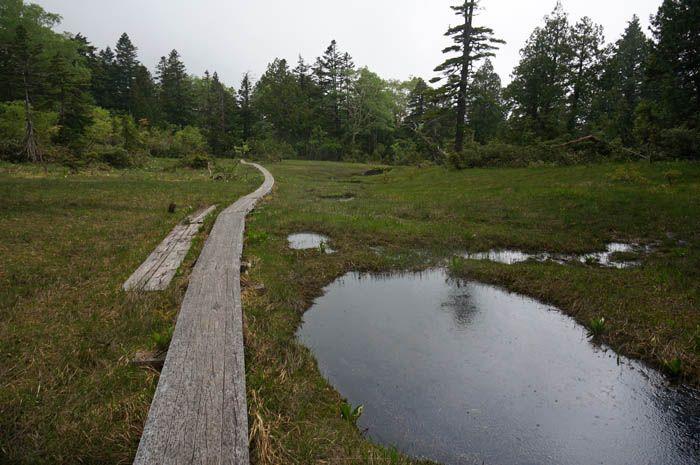 尾瀬沼も尾瀬ヶ原も楽しむなら「御池」からの山小屋泊