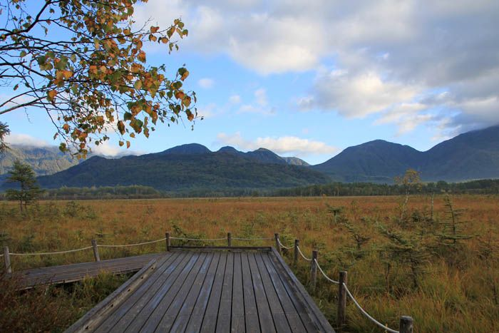 すでに秋色に染まった戦場ヶ原の朝が絶景!