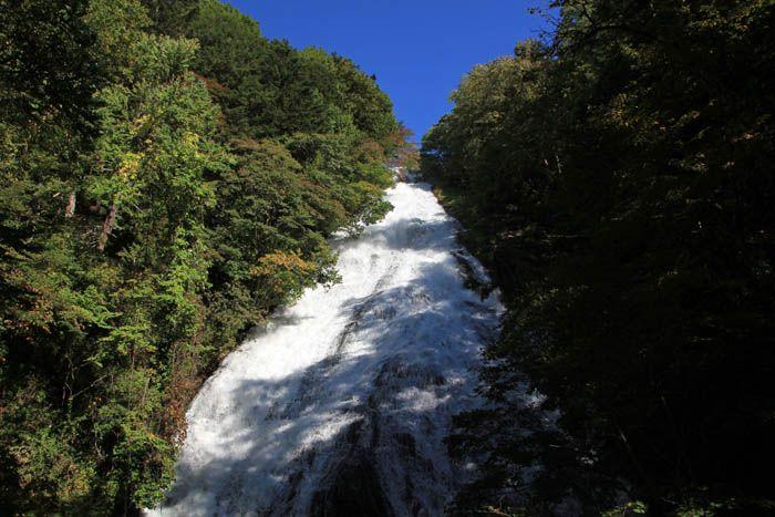 湯滝は大迫力の姿と幻想的な森の風景を楽しませてくれる!