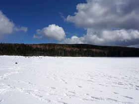 八ヶ岳・雨池で気軽に本格的なスノーシューを楽しもう!