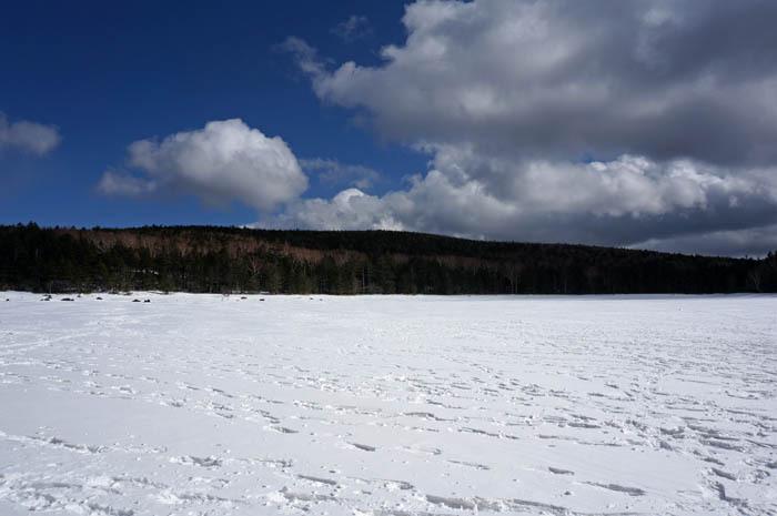凍結して雪が積もった雨池は幻想的な美しさ!